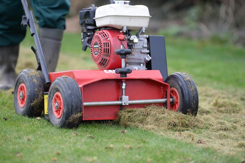 When is the best time to scarify my lawn?