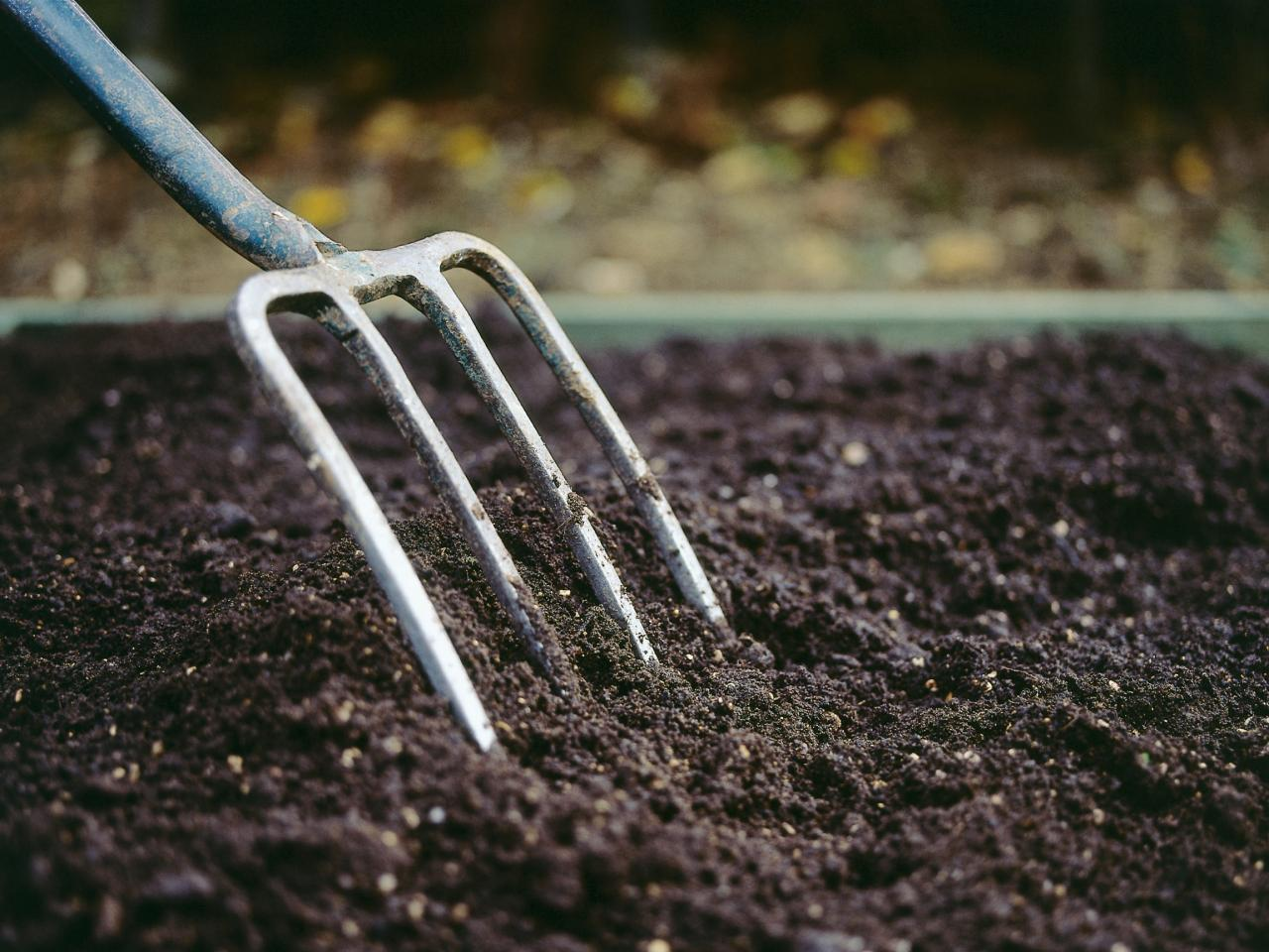 The importance of soil type